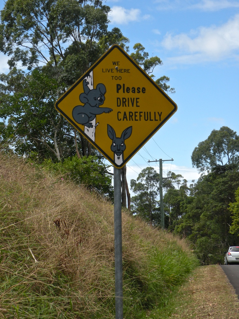 Please Drive Carefully Road Sign